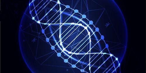 Bacteria DNA Testing